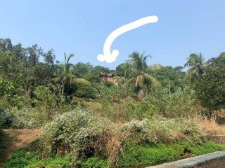 Farmhouse on rent at Pen Maharashtra