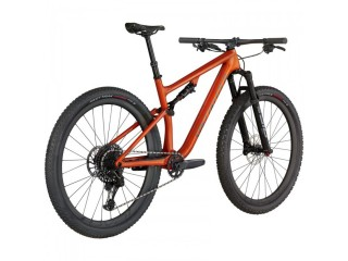 Specialized Epic Evo Expert Mountain Bike 2021 (CENTRACYCLES)